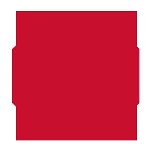 icons-service-security-intrusion-copy