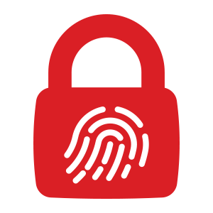 icon-cybersecurity-1